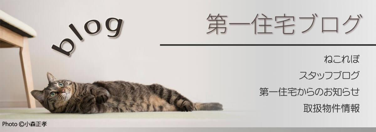 第一住宅ブログ ねこれぽ・スタッフブログ・お知らせ・物件情報
