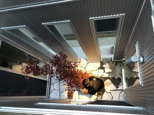 2階からの画像