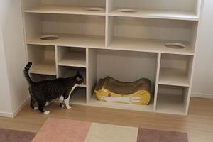 猫と暮らす家具