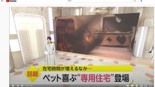 2021-05-21 FNN it! 放送サムネイル