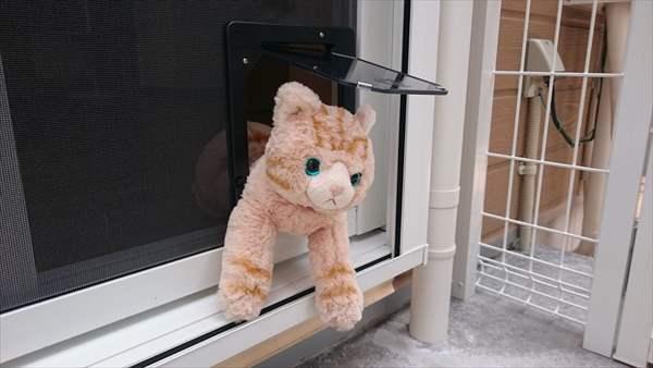 猫脱走防止