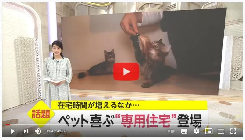 猫と暮らす家 テレビ取材画像
