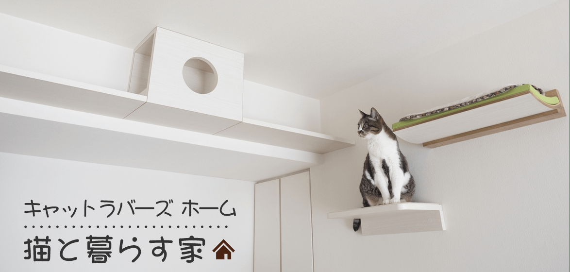 猫と暮らす家 ヘッダー